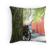Old Barn in Pioneer Village Throw Pillow
