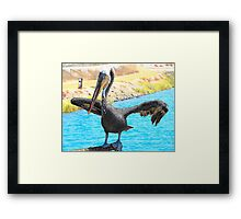 Sweet Pelican Framed Print