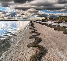 Zig-Zags on the Sand by Heather Prince