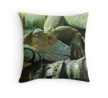 Did you wake me for a reason? Throw Pillow