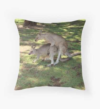 18+ Kangaroos Throw Pillow