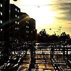 city in shadow by Fadi  Barake