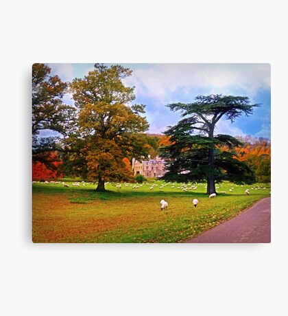 Autumnal View of Dumbleton Hall  Canvas Print