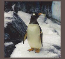 Penguin at Seaworld Orlando, FL Kids Clothes