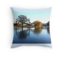 Mid-Morning at Mother Natures Ice Rink Throw Pillow