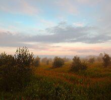 misty moroccan winter morning by Hannele Luhtasela-el Showk