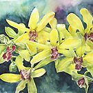 Yellow Orchid by Janis Lee Colon