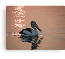 "Pelican ""Bush fire sunset"" Canvas Print"