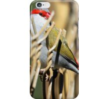 Red-browed Firetail iPhone Case/Skin