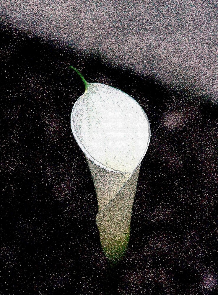 Solo Una Flor by RoyAllen Hunt