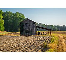 Tractor Shade Photographic Print