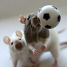 Playing soccer. by Ellen van Deelen