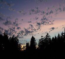 Lavender Blue Sky by Jonice