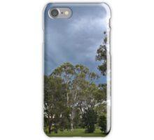 A Summer Storm iPhone Case/Skin