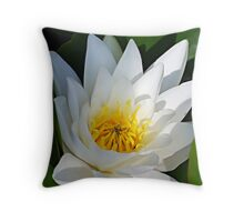Water lily,  Throw Pillow