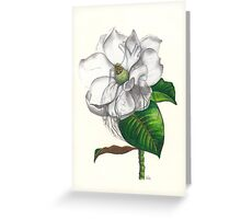 Heart of the Magnolia Greeting Card