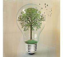 green ideas Photographic Print