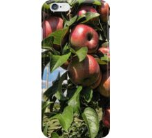 Apple Tree iPhone Case/Skin