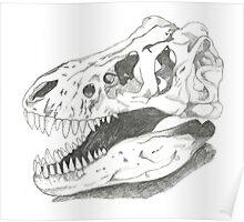 Trex skull Poster