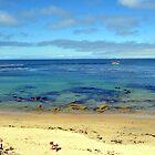 Beach Fun by Lorrie Morrison