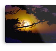 Golden Coastal Sunset Metal Print