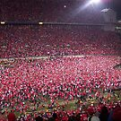 Ohio State vs. Michigan - Nov. 2006 - The victory!  by Rachel Counts