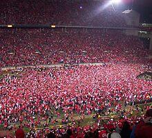 Ohio State vs. Michigan - Nov. 2006 - The victory!  by Rachel Counts