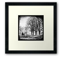Gostwyck, Northern Tablelands, New South Wales, Australia Framed Print