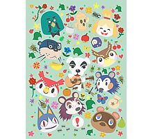 Animal Crossing New Leaf Town Folk Photographic Print