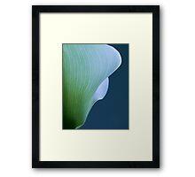 Calla Curves Framed Print