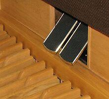 The Organ Pedals by Kathryn Jones