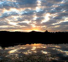 Hinterland Sunset by Kathie Nichols