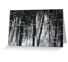 Lily Pads And Tree Reflections Greeting Card