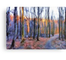 Winter Sunset In The Beech Wood Metal Print