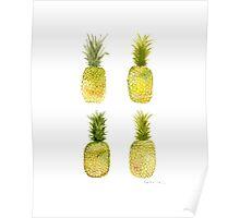 Four Mini Pineapples Poster