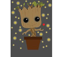 Groot with Rose/Fireflies Photographic Print