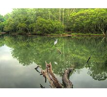 Reflections of Booragul Photographic Print