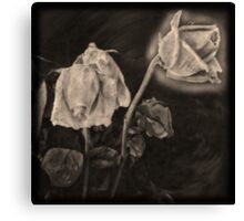 Portrait of a Dying Rose Canvas Print