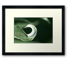 Captain Hook Framed Print