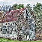 Rural Maine Delight by Richard Bean