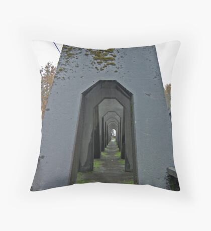 A BRIDGE OVER TROUBLED WATER Throw Pillow