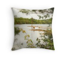 Shall we go for a paddle Mabel? Throw Pillow
