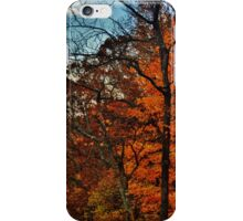 Autumn Horizon iPhone Case/Skin