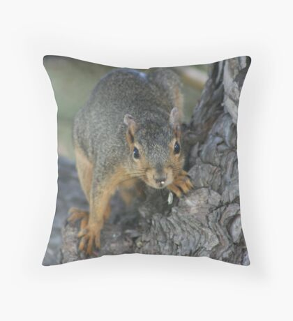 Squirly Throw Pillow