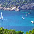 Cala Llonga Bay IV by Tom Gomez