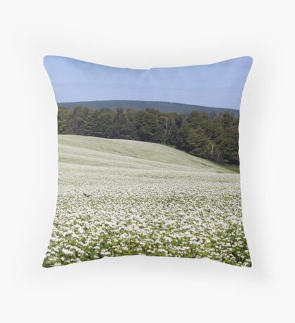 Summers Snow III Throw Pillow