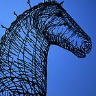 Heavy  Horse Blue by David Hutcheson
