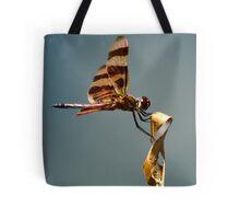 Bug Olympics XVII Tote Bag