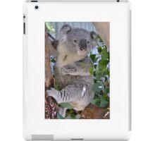 KOALA 'BILL' iPad Case/Skin