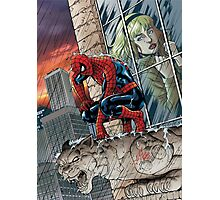 Still crushed. Spidey misses Gwen fan art by Al Rio - color Photographic Print